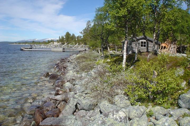 Ventebua på Røsanden er en av de åpne koiene til Statskog. Her er det ikke meningen at noen skal overnatte, men om du vil sove i en gammel tømmerkoie er det omtrent 20 andre å velge mellom i Femundsmarka.