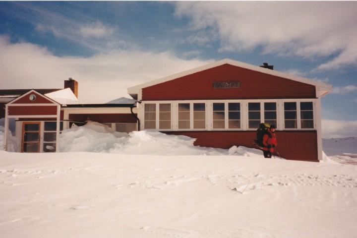 Turisthyttene på Hardangervidda er et godt sted for å observere den sjeldne tradisjonalisten.