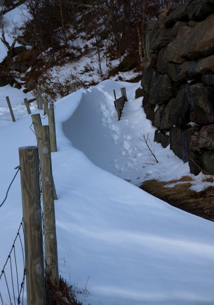 Vinddriver etter nattens snøstorm. Her var det bart 24 timer før.