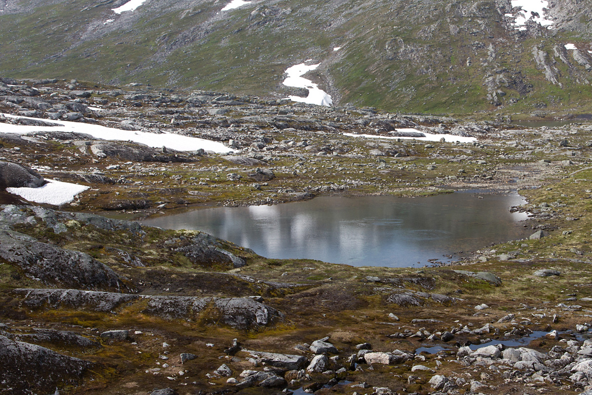 Sunndal fjellstyre driver et omfattende kultiveringsarbied, så selv de minste tjern og dammer kan inneholde fisk så lenge de kan overleve vinteren.