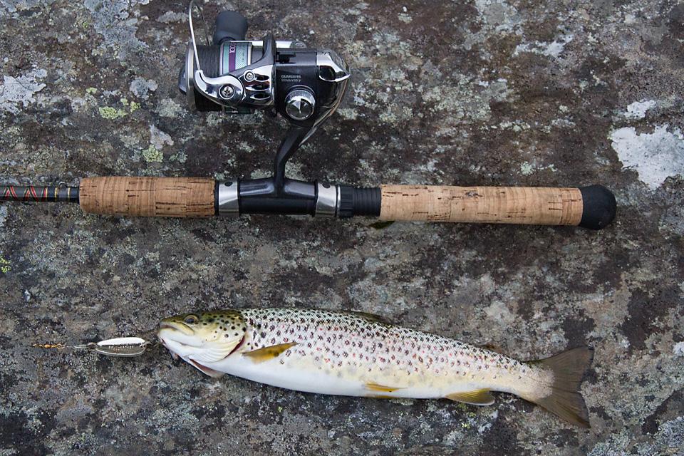 Etter Moskanjavri fisker jeg meg nedover Rostaelven og får noen små ørreter i de mange kulpene.