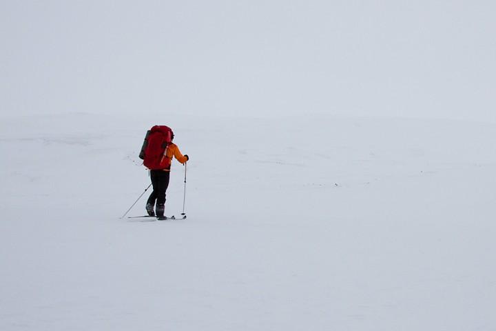 Enkelte dager er alt hvitt. Et sted i nærheten av Dividalshytta.