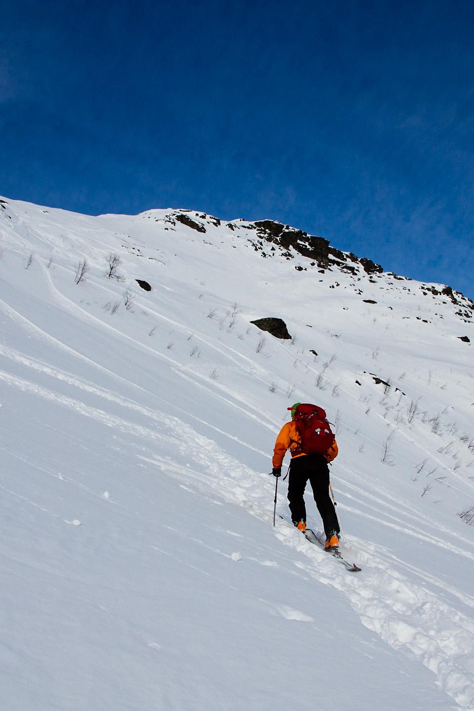Dagens topptur på Blåbærfjellet i Tamokdalen var verdt hver eneste høydemeter.
