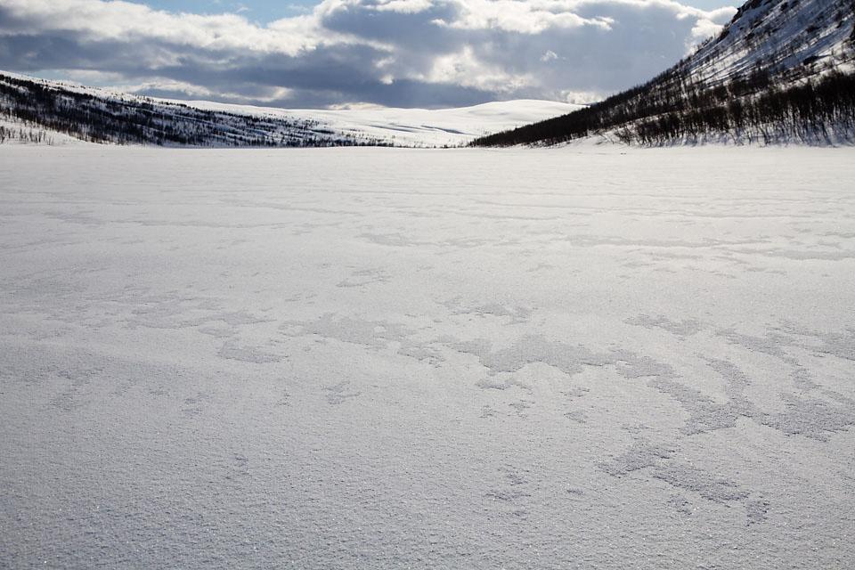 Ikke godt å vite hvor en skal bore et knøttlite hull på isen for å finne storfisken.