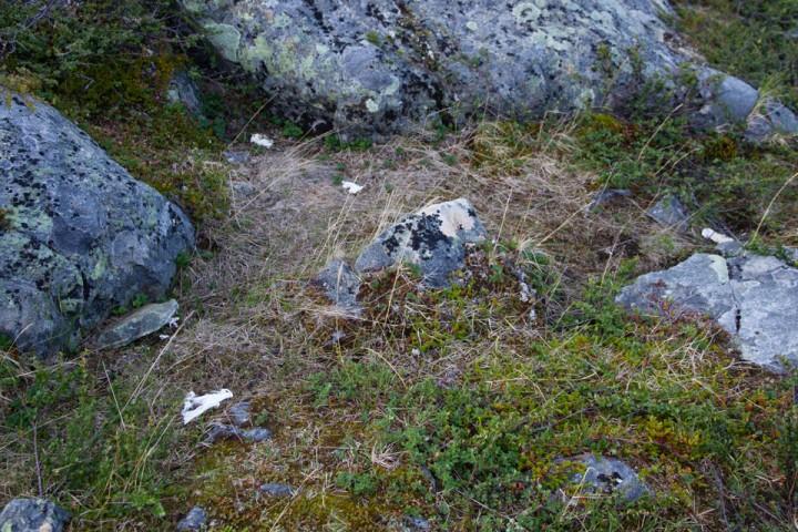 Kungleden i Sverige. På strekningen mellom Tjäktja - Alesjaure så det i mange kilometer ut som om en utedo hadde eksplodert.