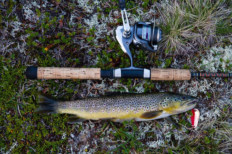 Ekesdalsfjella bød på fisk på første kastet i et navnløst vann på 1200 moh.