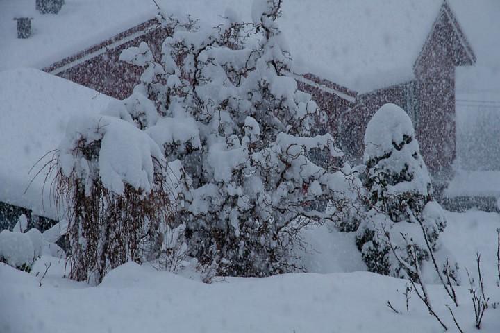 Andre juledag våknet vi til dette synet. Forhåpentligvis blir det flere slike dager i det nye året.