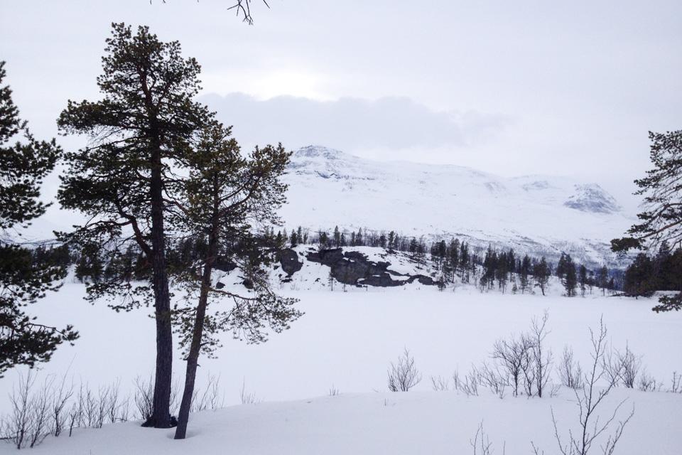 Skitur til Brennskogtjønnet