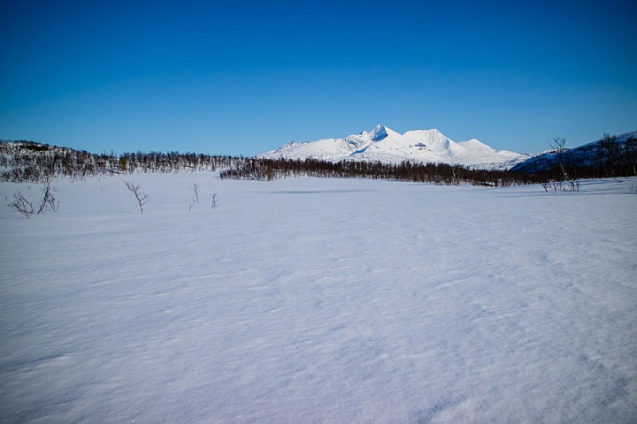 Utsikten til landemerket Istindan er det vanskelig å bli lei av. Rett og slett på topp 3 over vakre fjell i Troms.
