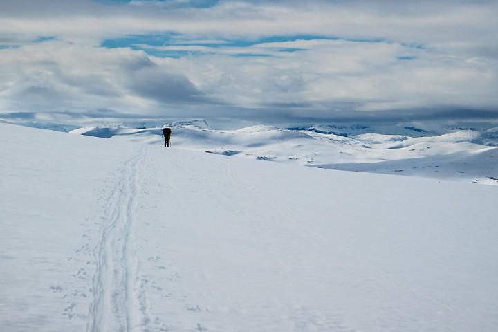 Vårskitur i indre Troms. Ren meditasjon på to ski.