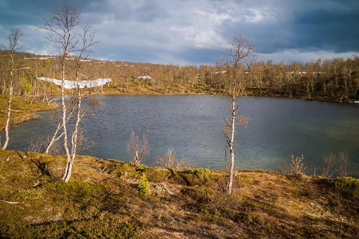 I området ved Dødesvantnet ligger en rekke med småvann og lokker med fin ørret.