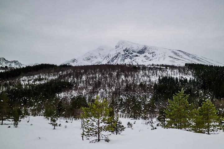 Den lette nysnøen fikk ikke ligge lenge i fred på toppen av Kvannfjellet før den blåste bort.