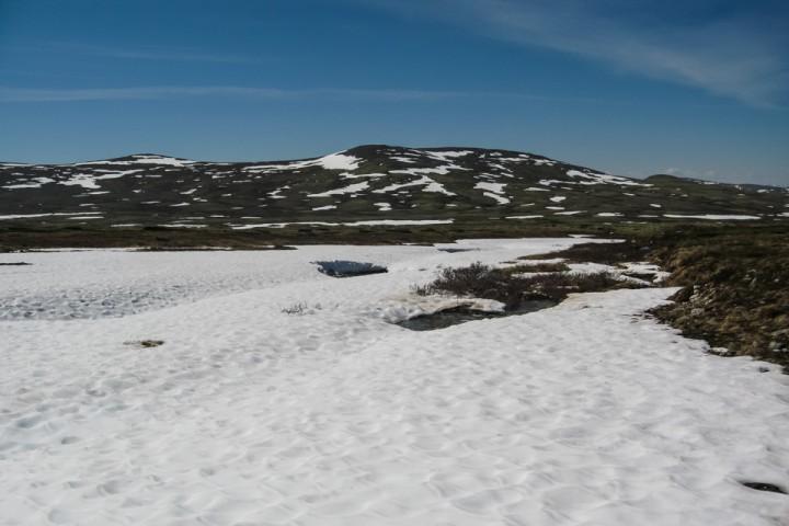 I midten av juni lå det fortsatt en del snø i høyden etter Raudsjøpiggen.