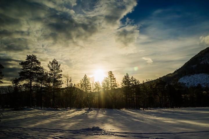 Sola kikker innom på et kort besøk på morgenen.
