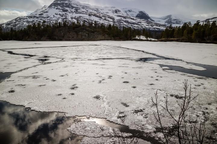 Stolpeis, åpne råker og is i oppløsning på 17. mai. Muligens sørger vinden for at det er delvis isfritt til helga.