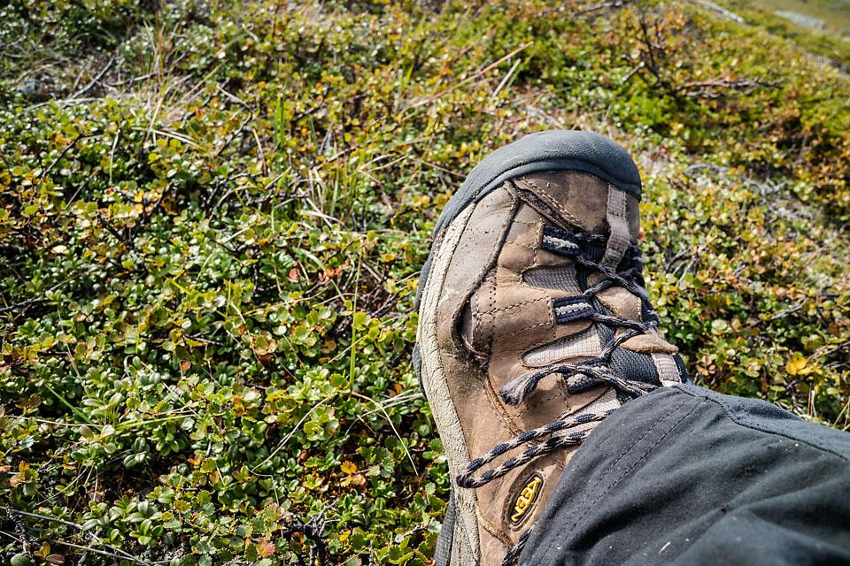 Når skoene jeg kjøpte i vår allerede er gått ut er det et tegn på at turåret har vært bra :)