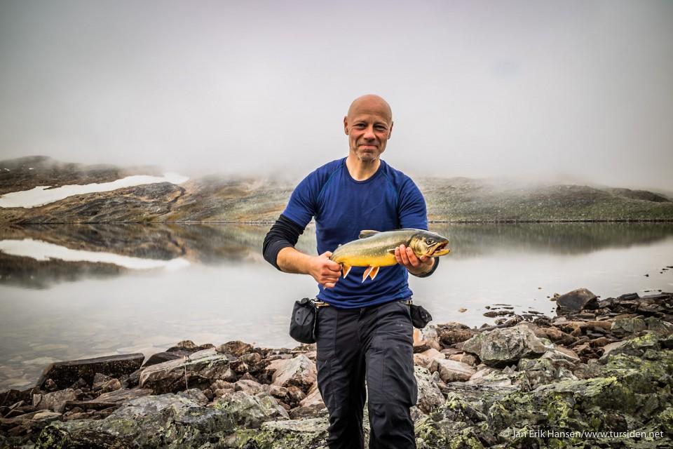 Røye fra et lite vann i Troms.