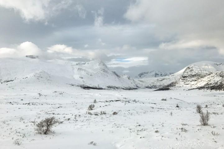 Steinflye/ østsiden av Høgdebrotet  så ut til å ha snøforhold. Ellers lite snø i terrenget der vinden fikk tak.