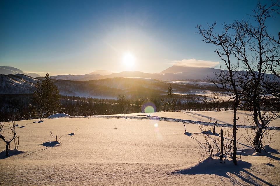 Lav vintersol på vei hjem.