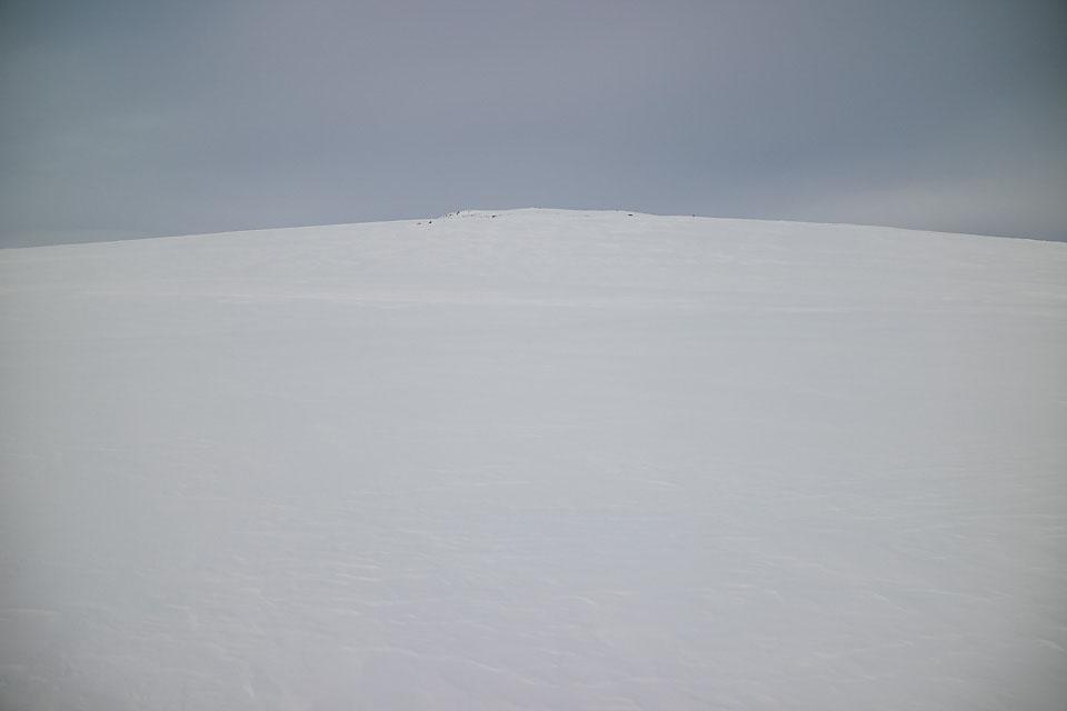 Etter tregrensa er det enkelt å finne naturlig rute til toppen.